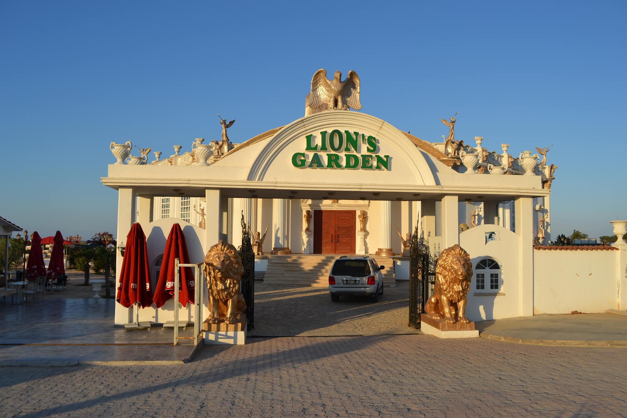 lions garden disco
